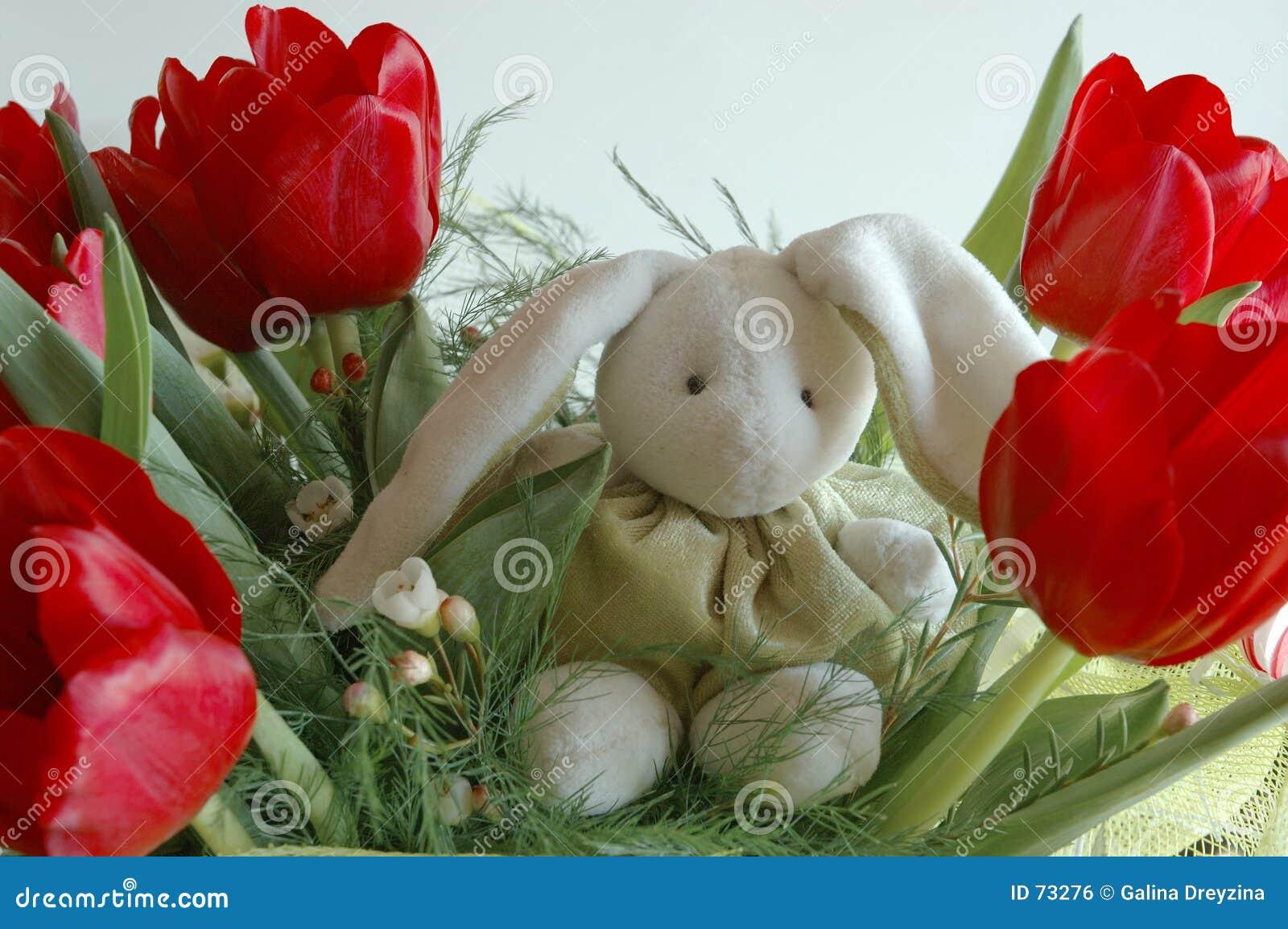 Bunny λουλούδια