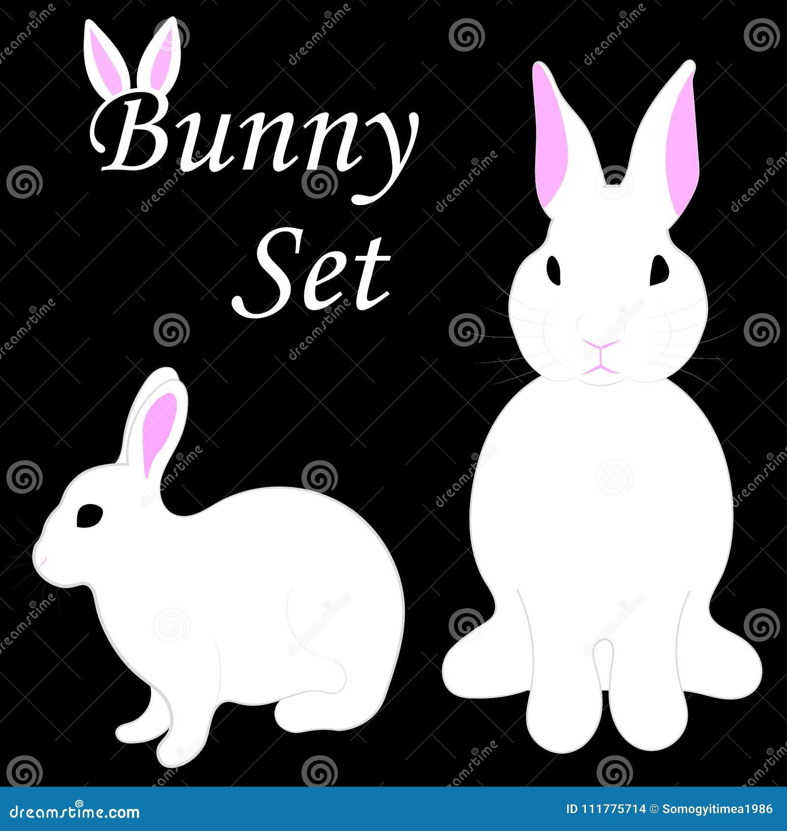 Bunny set on isolated black background.