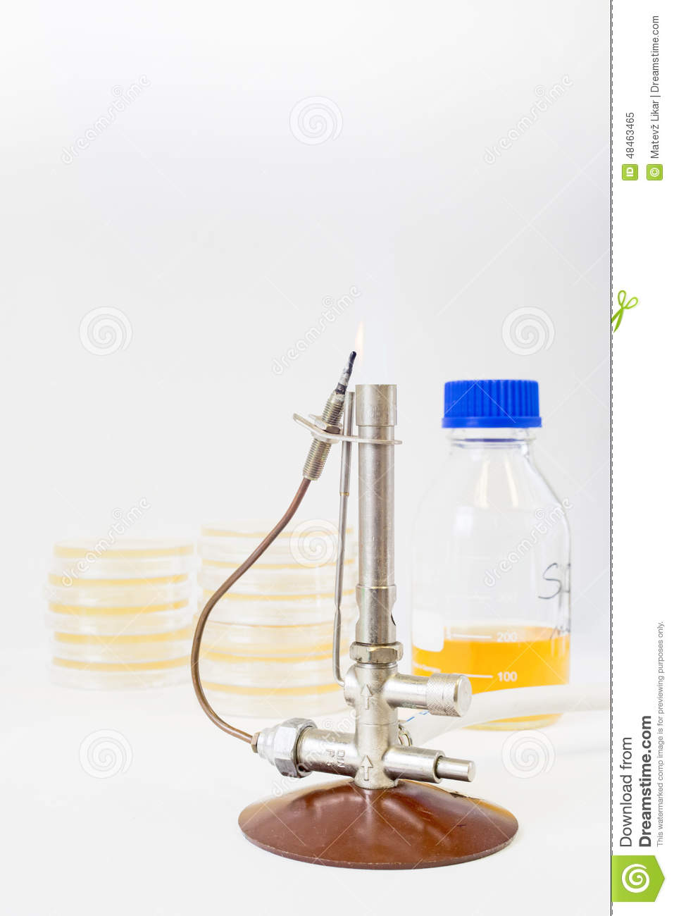 Bunsen burner with petri dishes and a flask