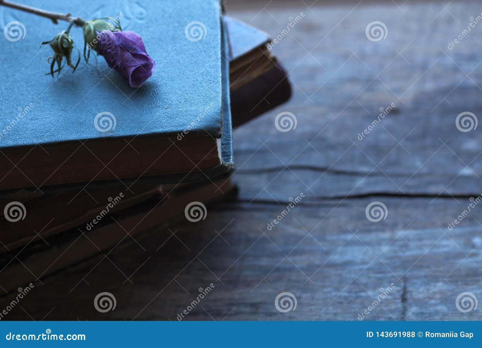 Bunt av gamla böcker med den torkade purpurfärgade blomman som är pösig på en träbakgrund