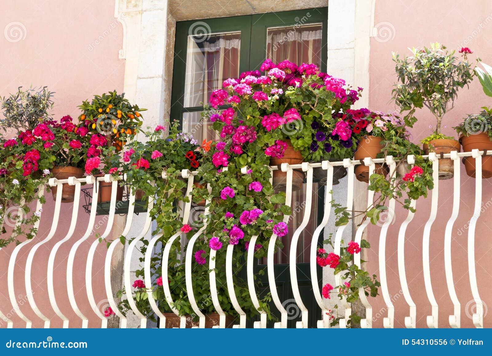 wohnzimmerz: blumen für den balkon with balkonblumen für sonnige, Gartengerate ideen