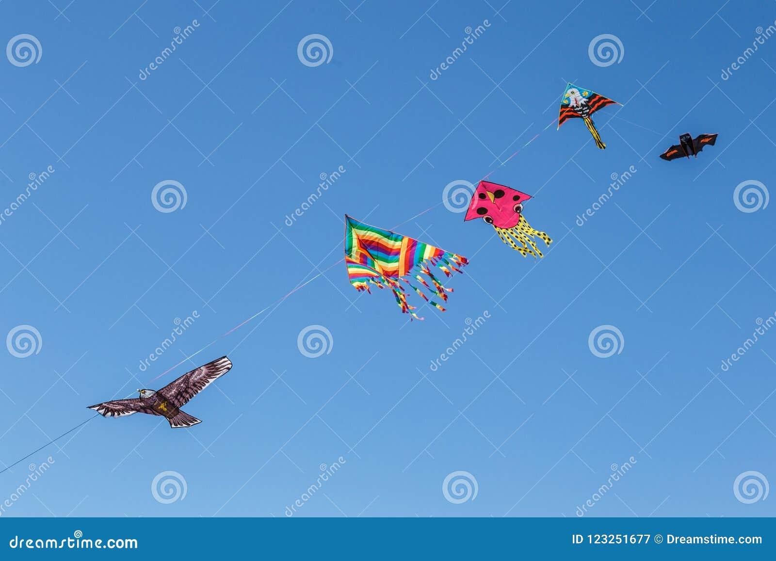 Bunte Drachen, die in einen Himmel schwimmen