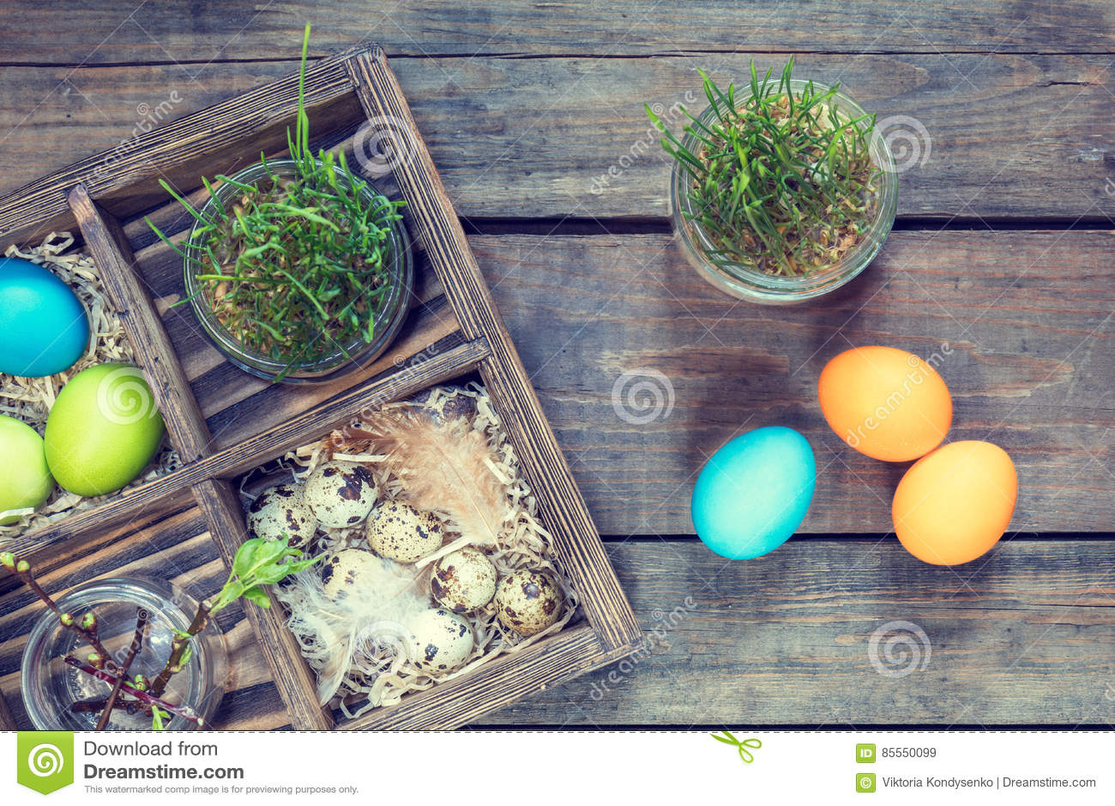 Bunte Hühnereiwachteleier keimten Weizen