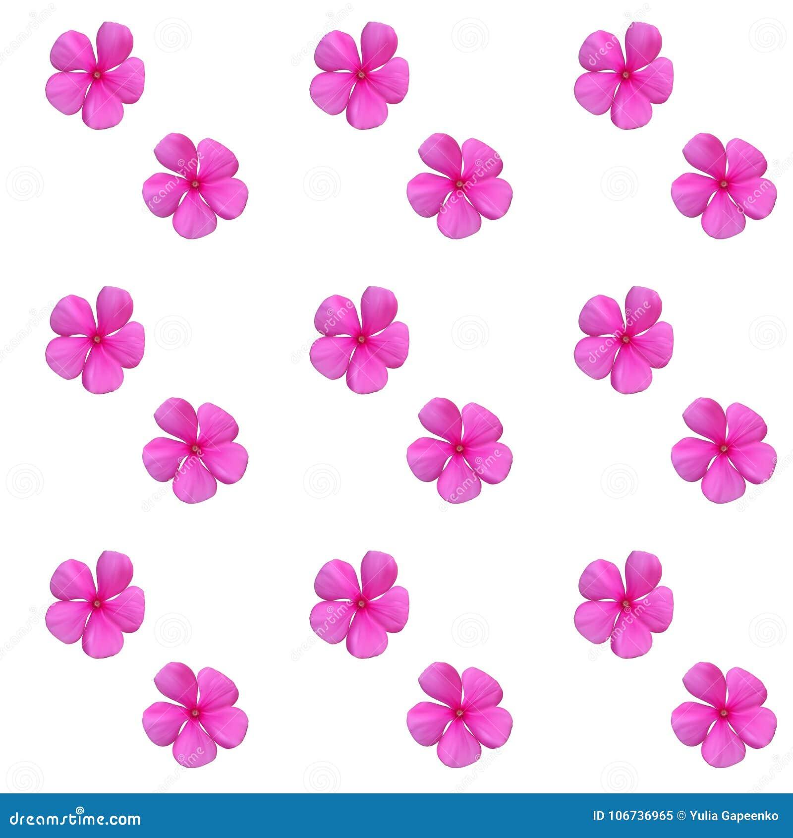 Bunte schöne naturalistische rosa Blume Nahtloses Muster V