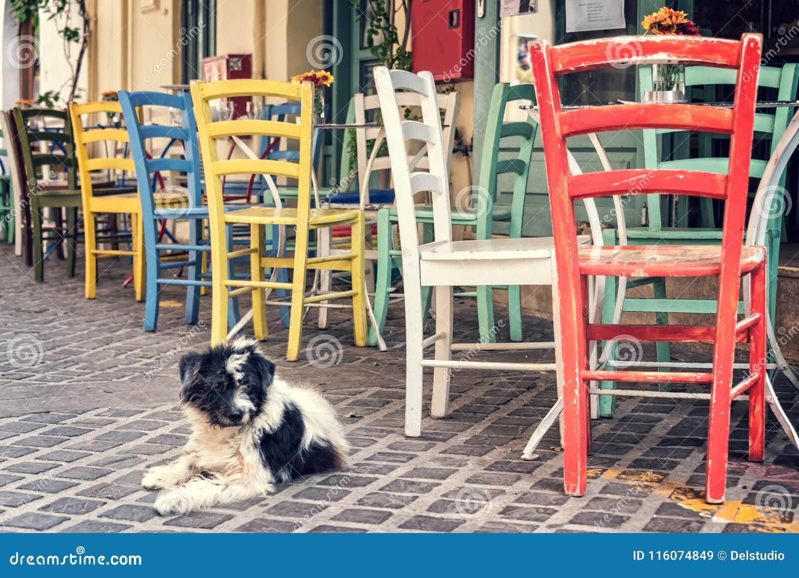 Bunte Stuhle Einer Restaurantterrasse In Einer Prdestrian Strasse Der Alten Stadt Von Chania In Kreta Griechenland Stockbild Bild Von Prdestrian Bunte 116074849
