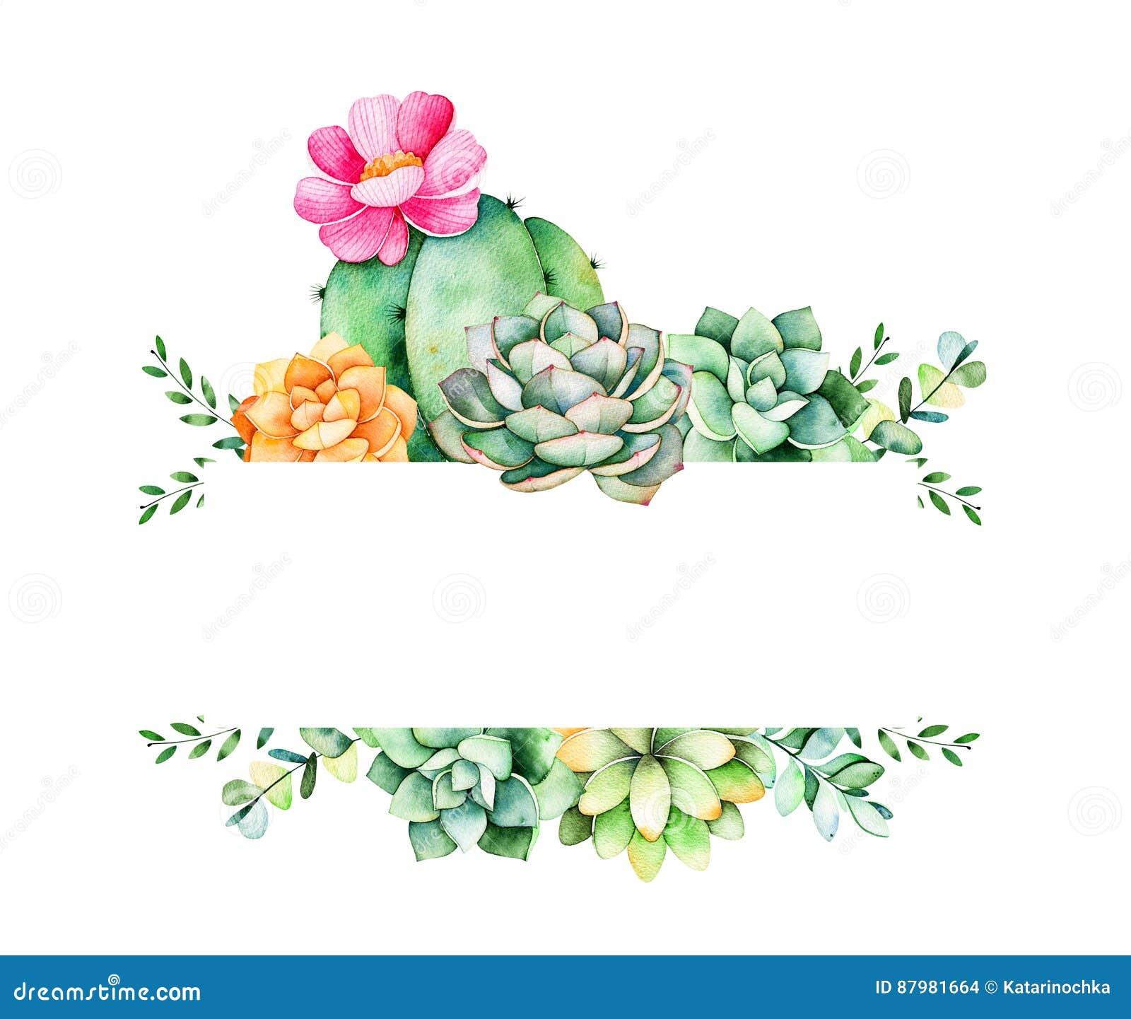 Bunter Blumenrahmen mit Blättern, saftiger Anlage, Niederlassungen und Kaktus