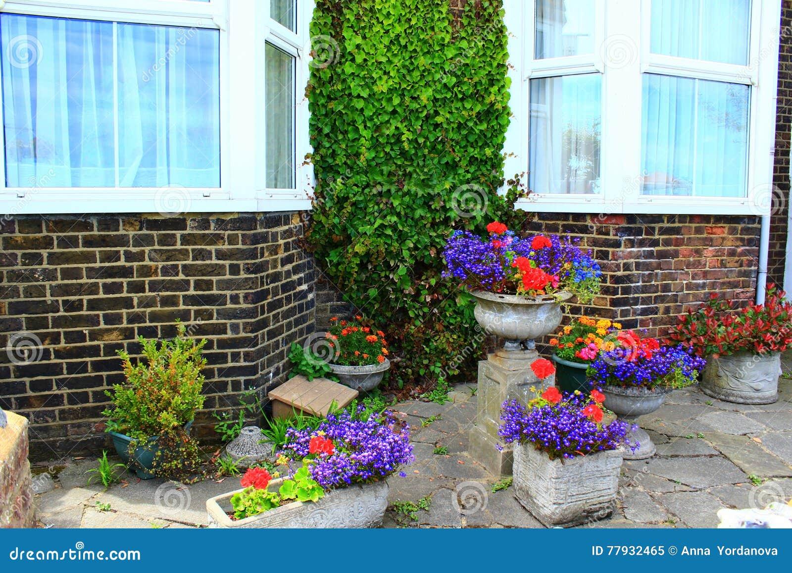 Bunter Blumentopf Hauspatio Stockbild Bild Von Aussen Ziegelstein