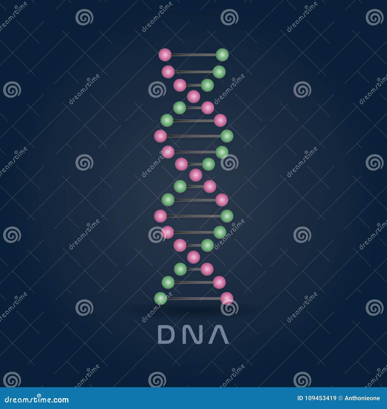 Buntes abstraktes DNA-Strangs-Symbol lokalisiert auf dunkelblauem Hintergrund