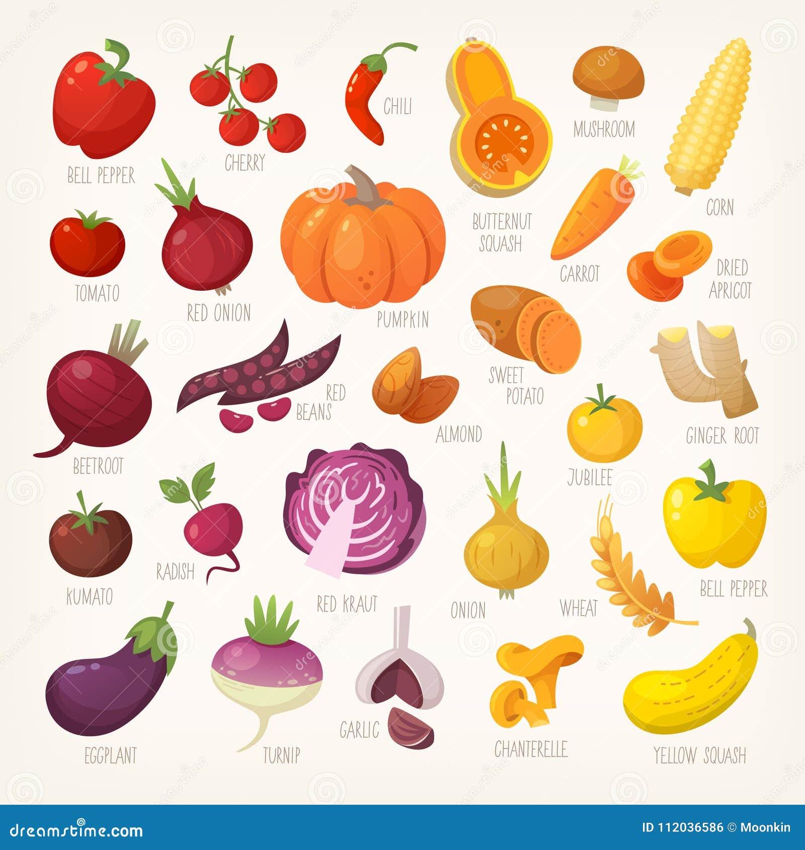 Buntes Obst und Gemüse mit Namen