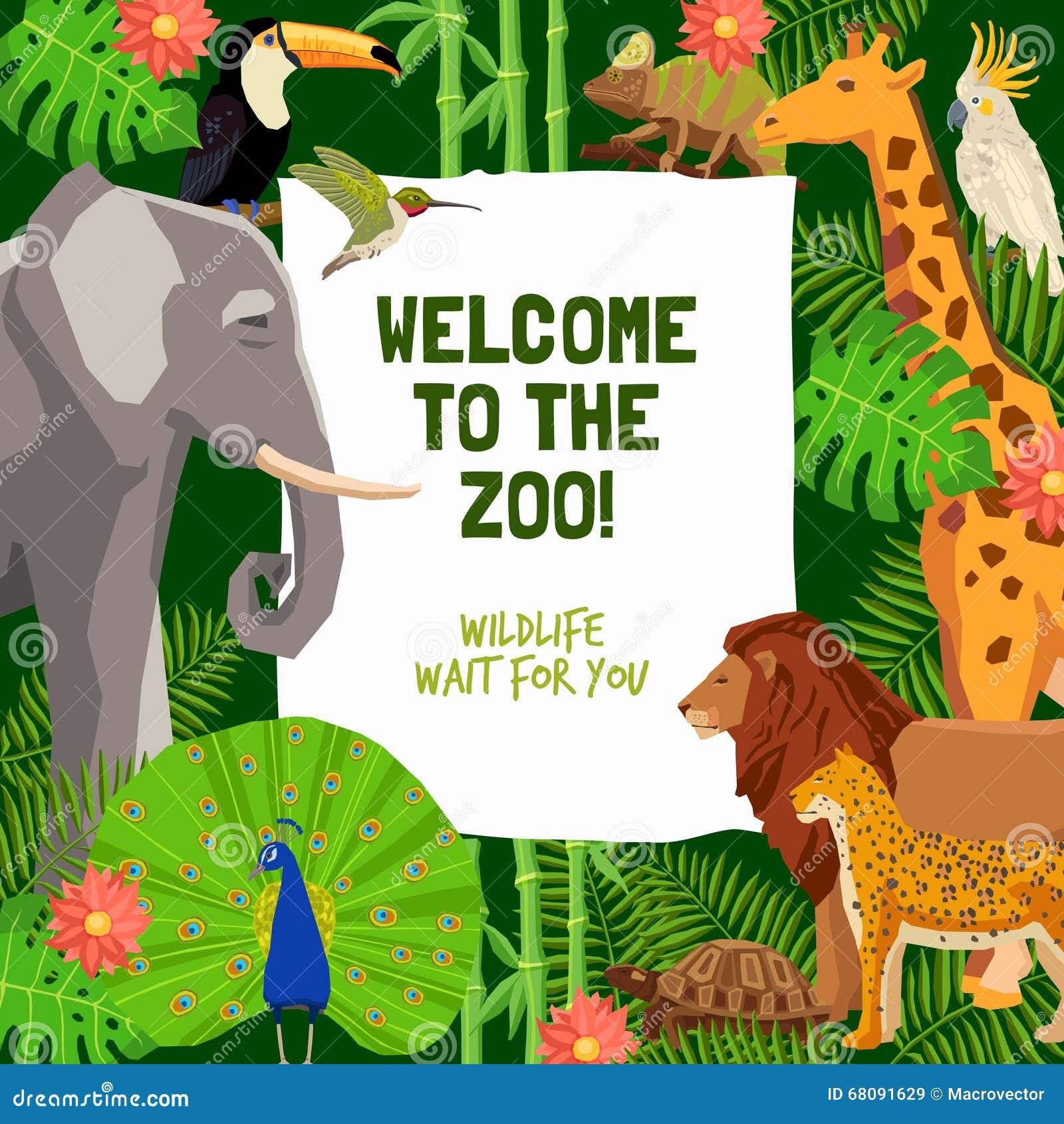 buntes plakat mit einladung, zoo zu besichtigen vektor abbildung, Einladung