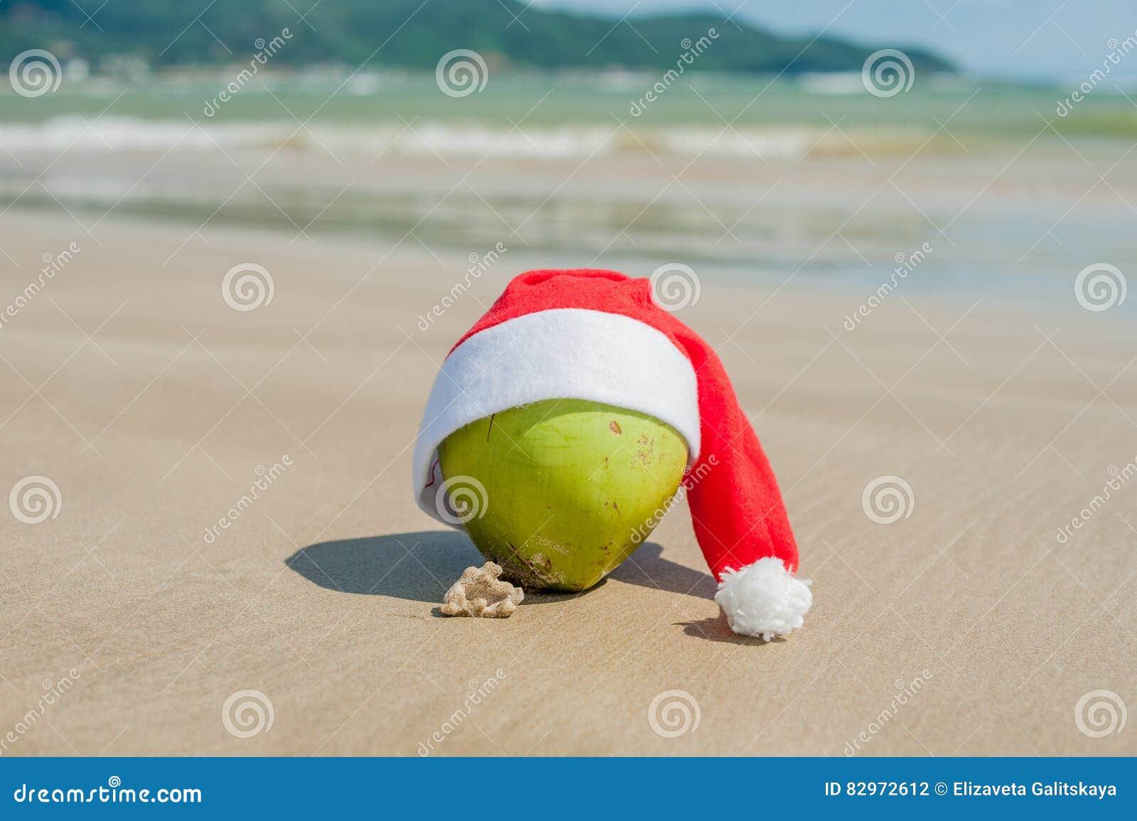 Buon Natale e buon anno sulla spiaggia di estate Noce di cocco in cappello  di Santa 53f120fed885