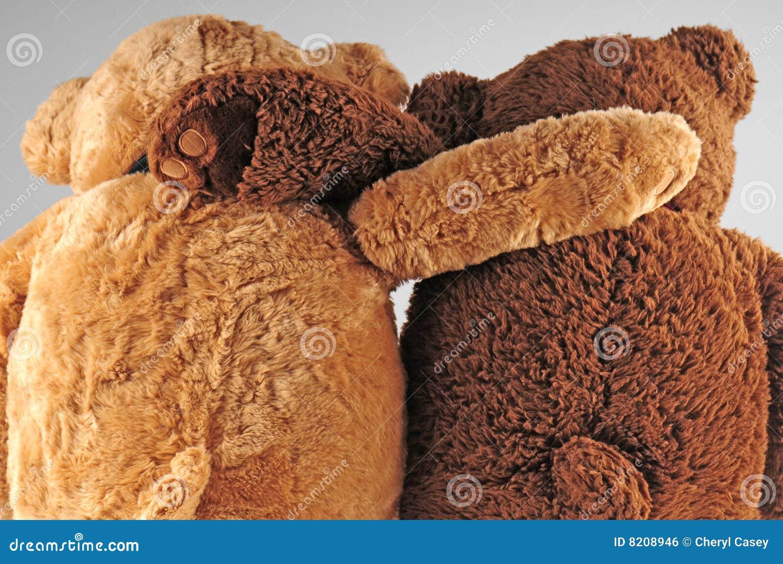 Buoni amici di Beary
