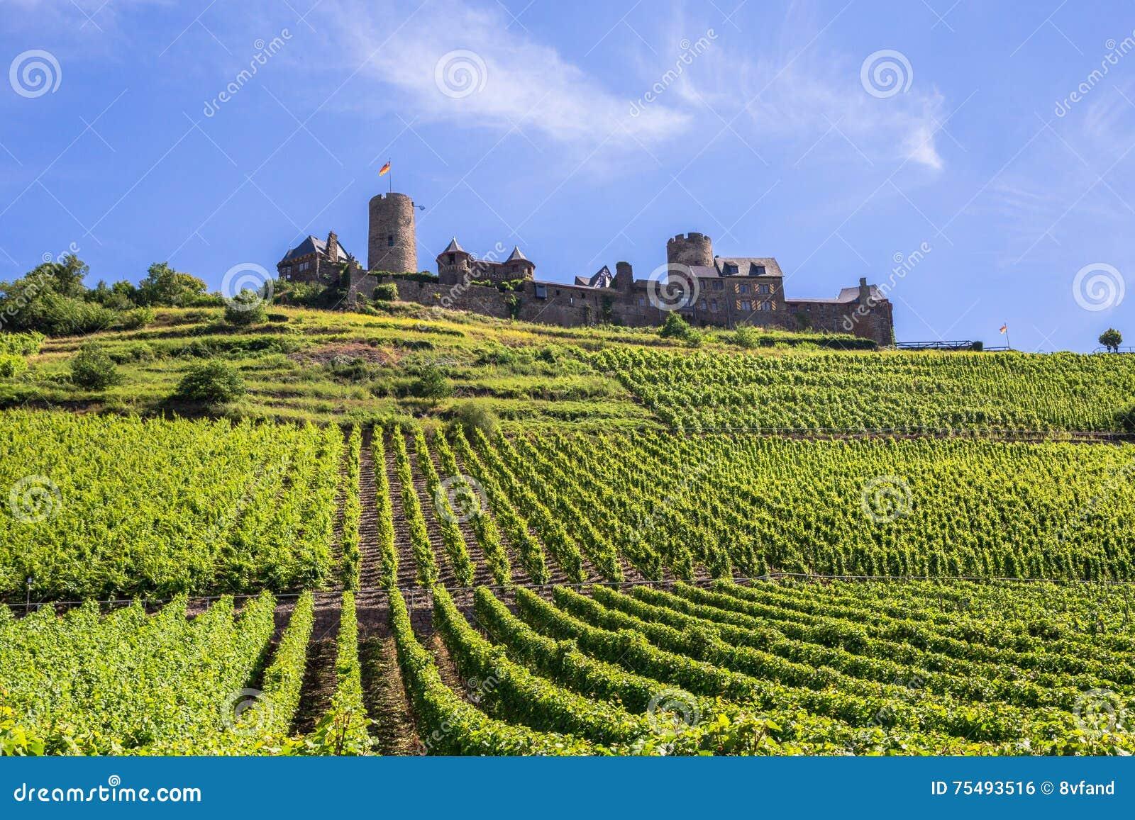 Burg Thurant aux vignobles de la Moselle