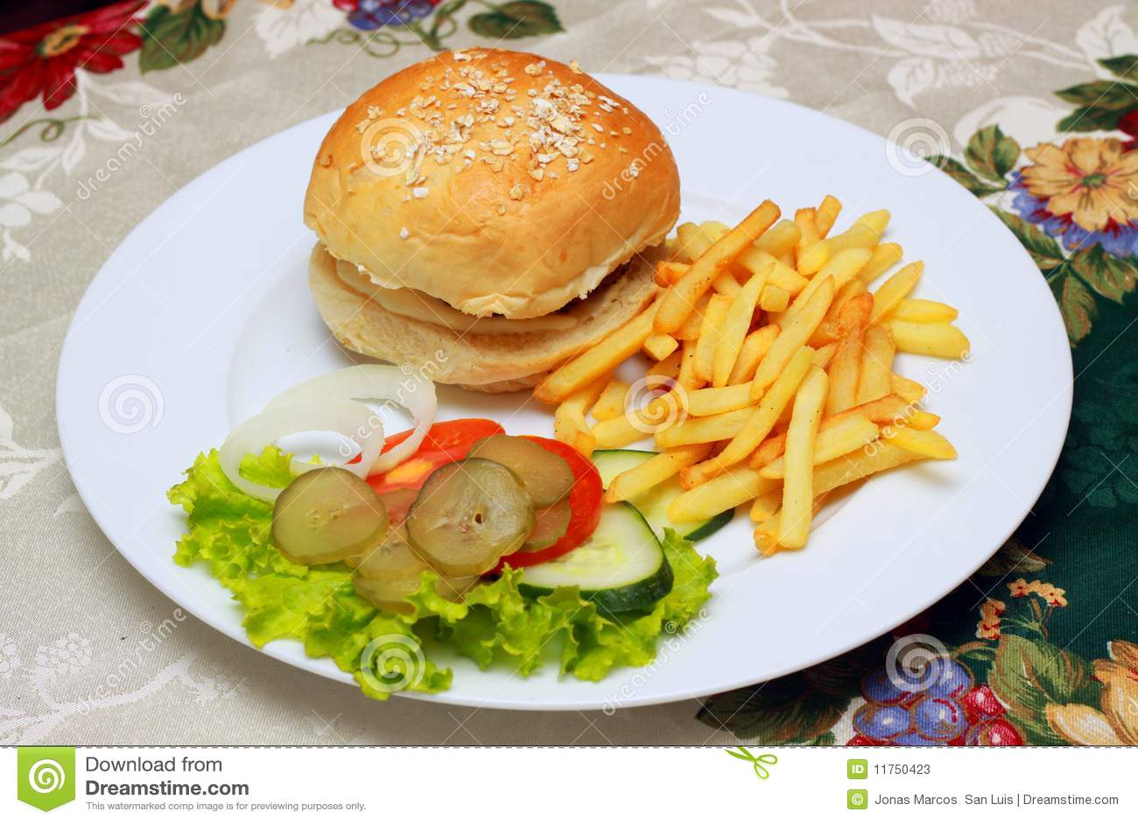 Burger And Fries Stock Photos - Image: 11750423