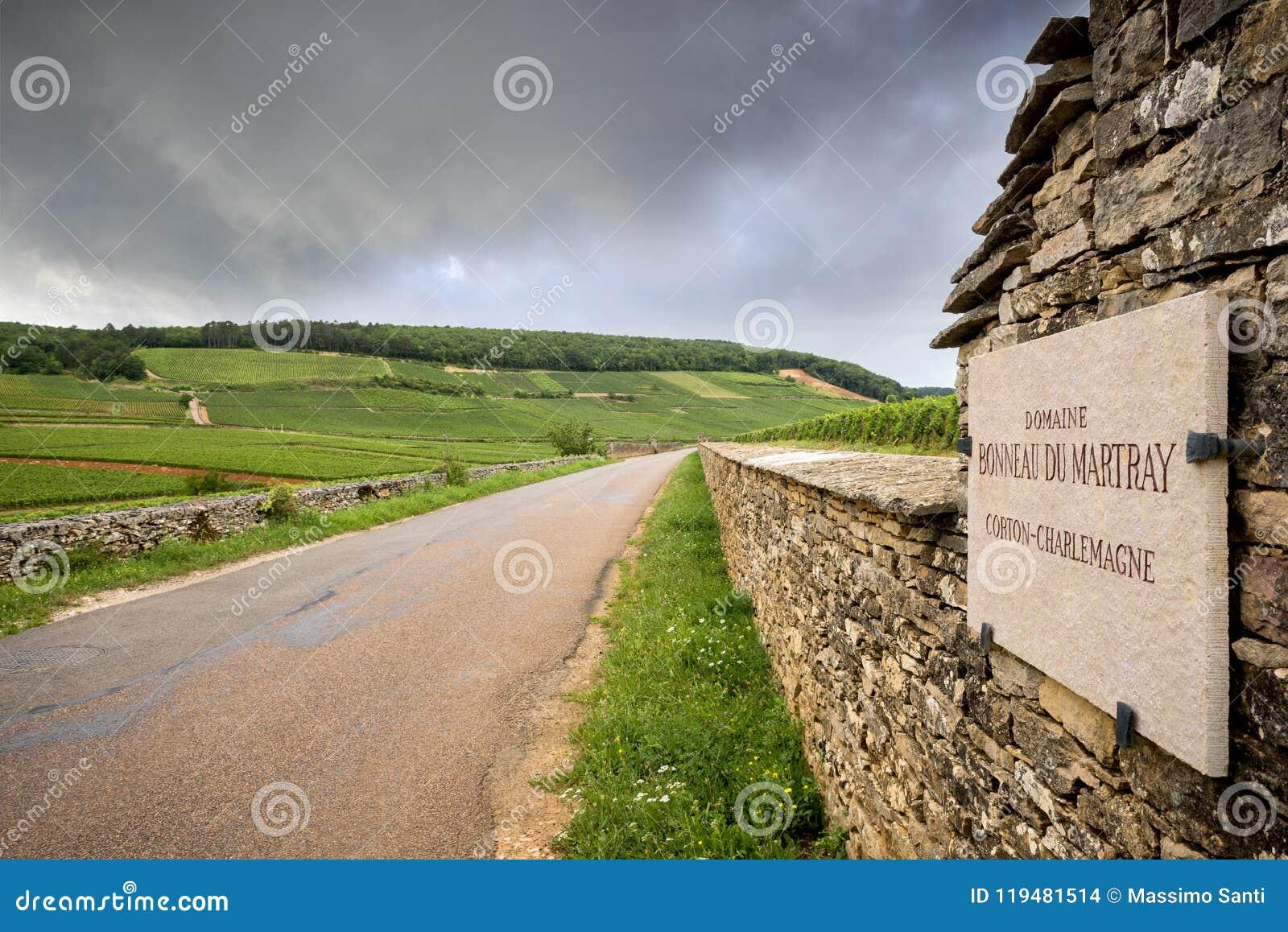 BURGUNDY - CORTON: φυσικός δρόμος που διασχίζει την περιοχή κρασιού κοντά σε Corton Γαλλία