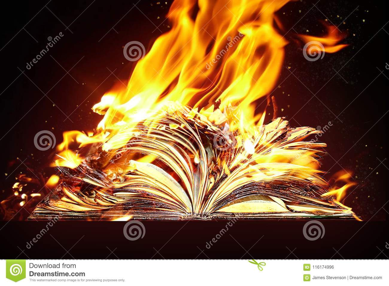 Burned book and fire.