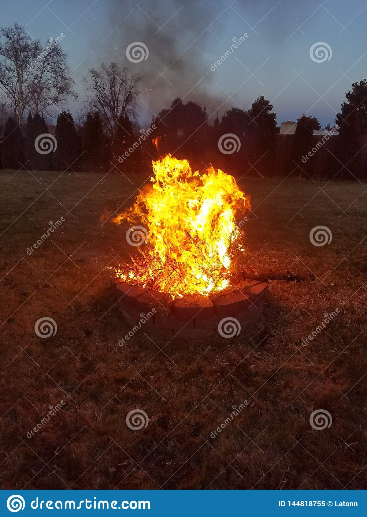 Burning the Christmas Tree of 2018