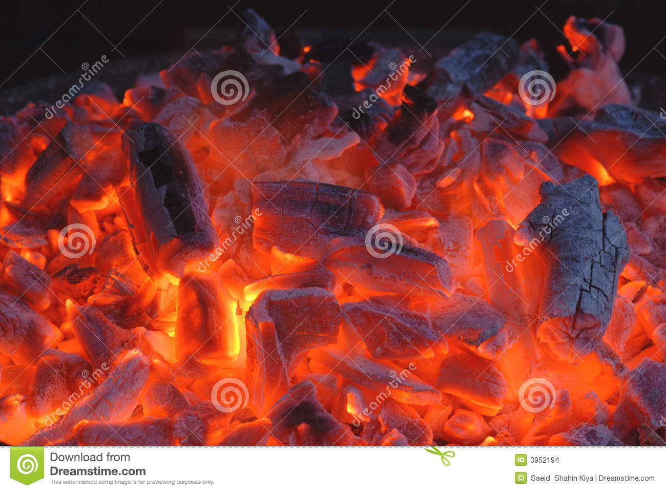 Burning Coal Stock Photo Image Of Night Burnt Fire