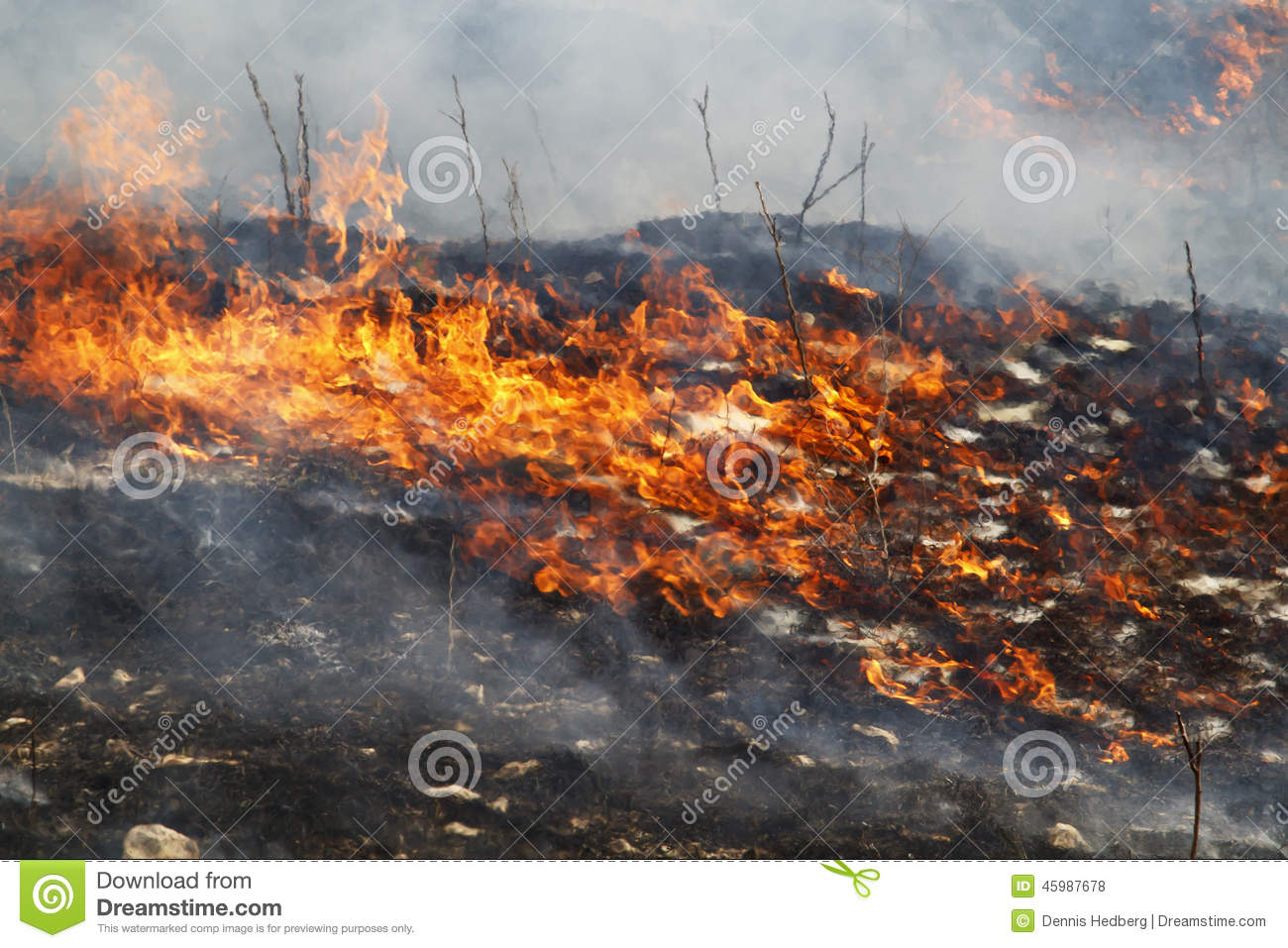 Burning Grassland In Flint Hills Of Kansas Stock Photo - Image ...