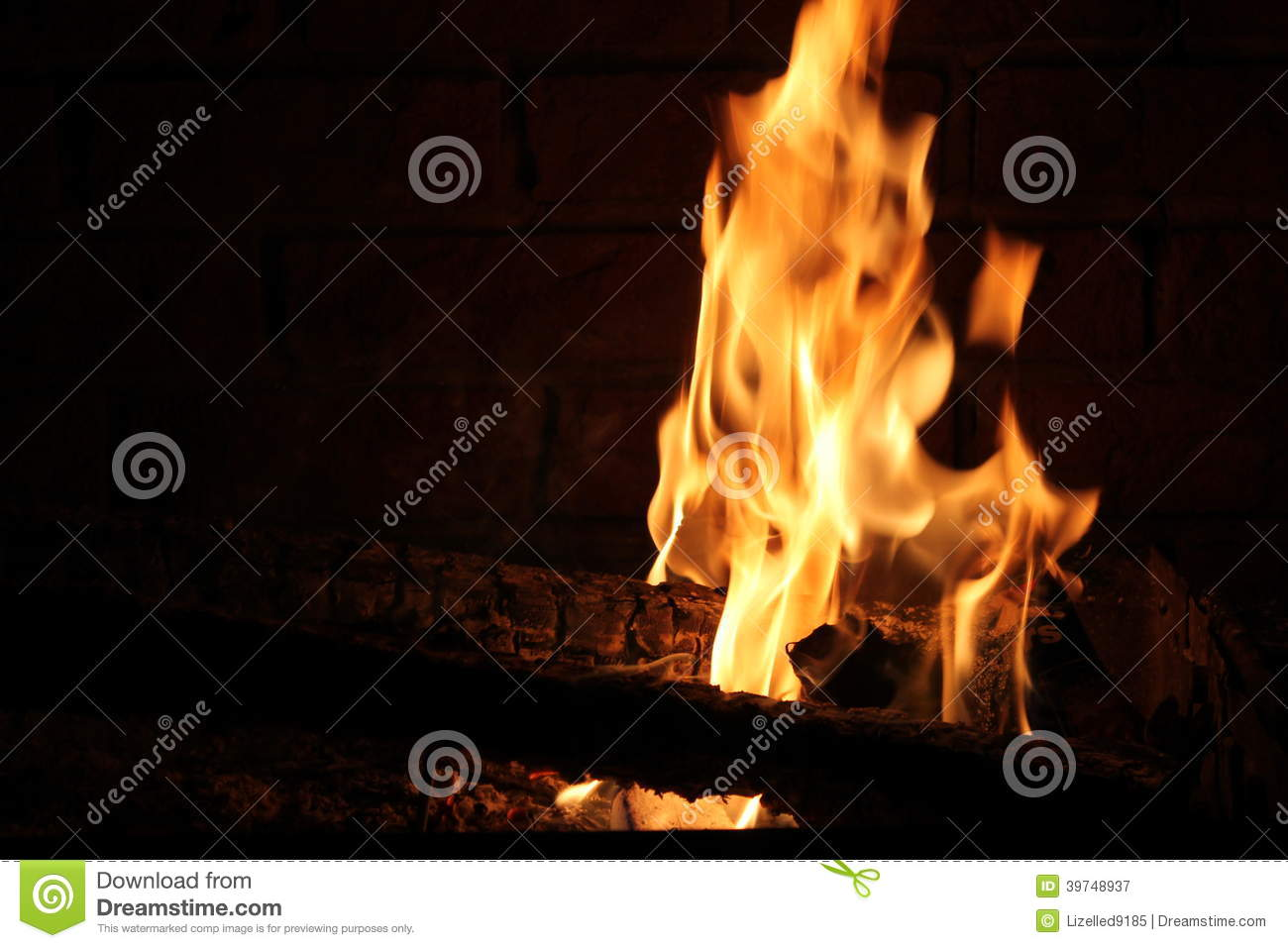 firewood the burns the hottest and Create an inviting glow and help warm your home with the help from this hardwood firewood best wood i have used, but it did burn a vibrant hot fire earth.