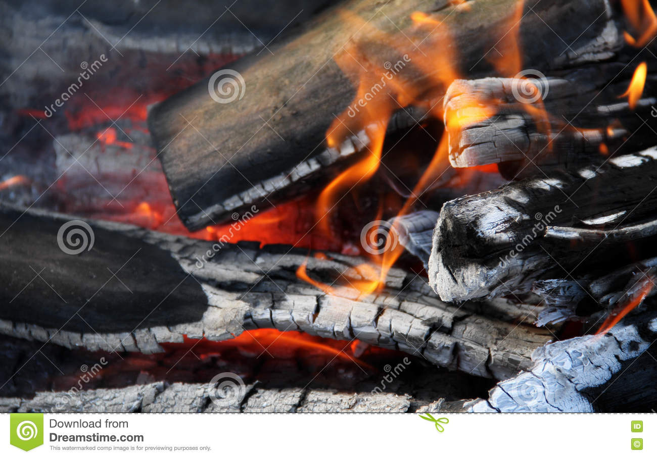 Burning Logs In Bonfire Flames Detailed Stock Photos Stock ...