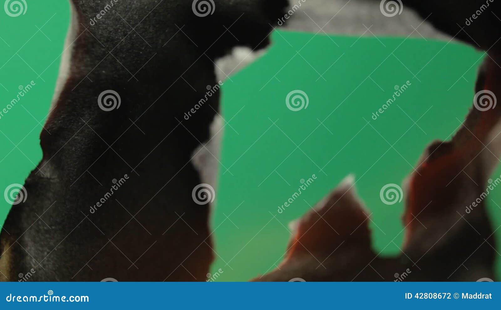 Fire & smoke green screen hd in free download   all design creative.