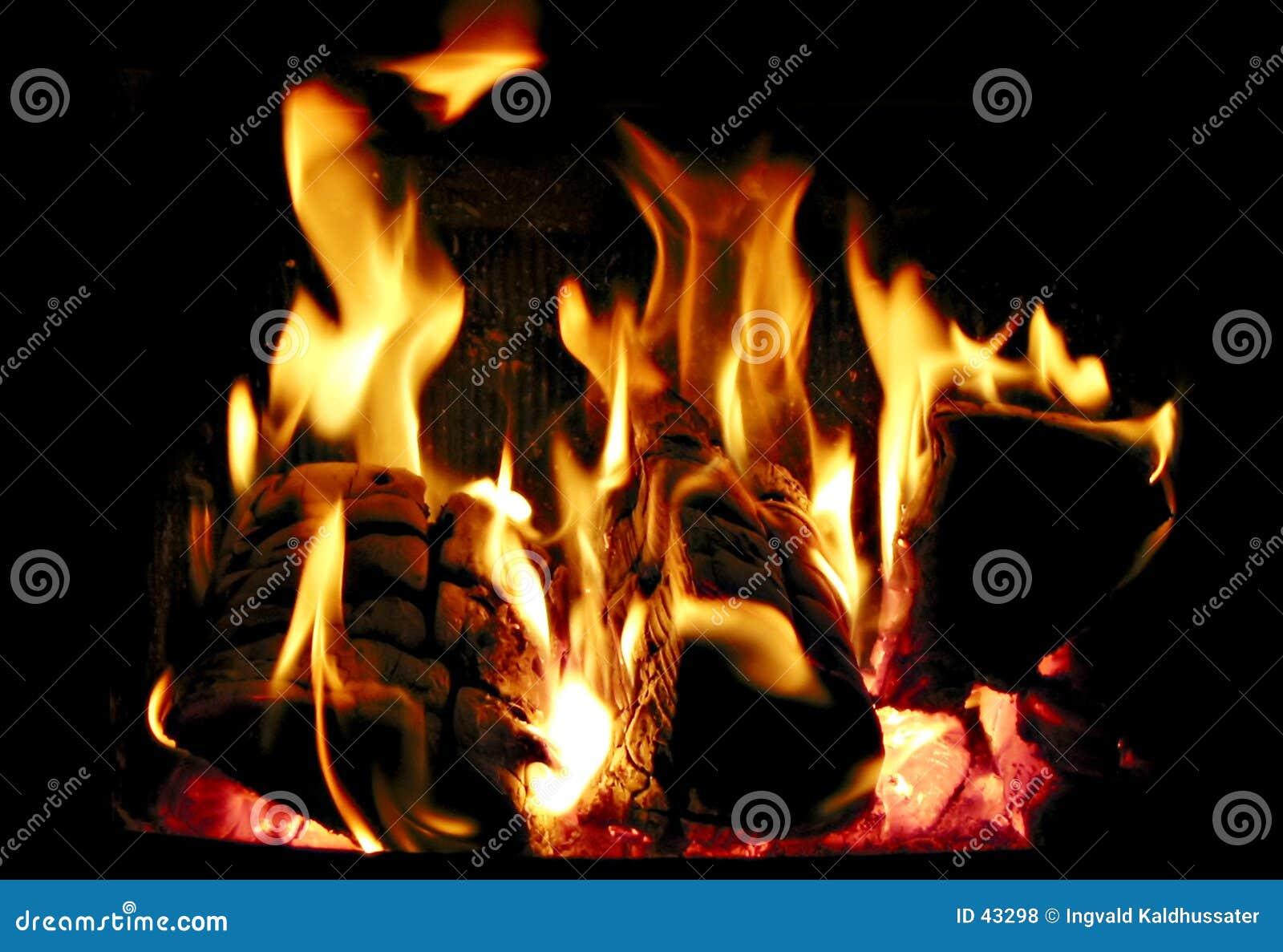 Burning trä