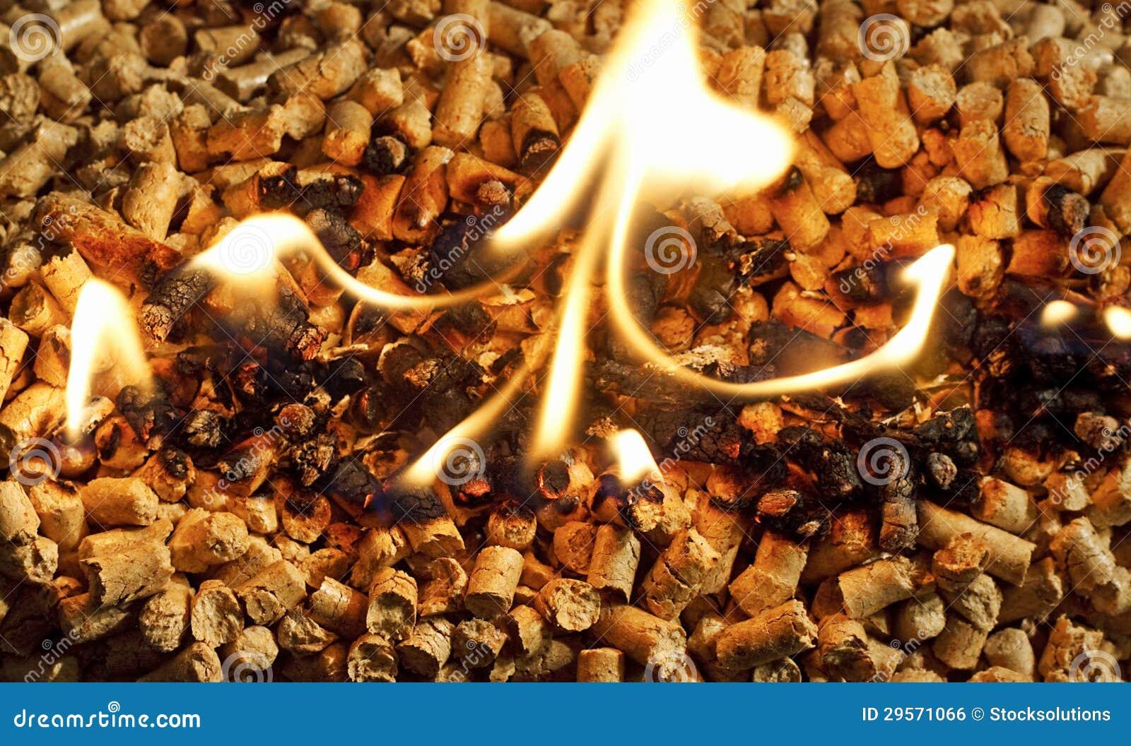 Burning wood chip biomass fuel a renewable alternative