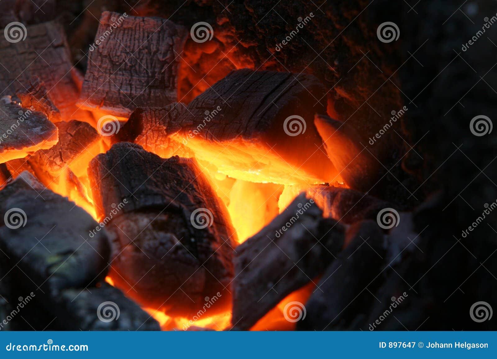 Burns węgle drewniane
