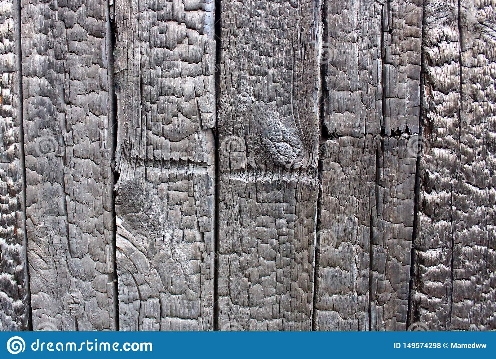 Burnt wood wall texture