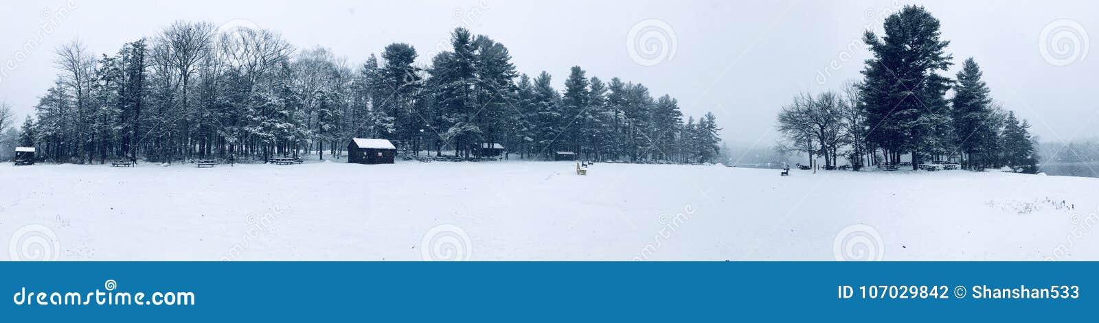 Burr stanu parka panoramy zimy Stawowy widok