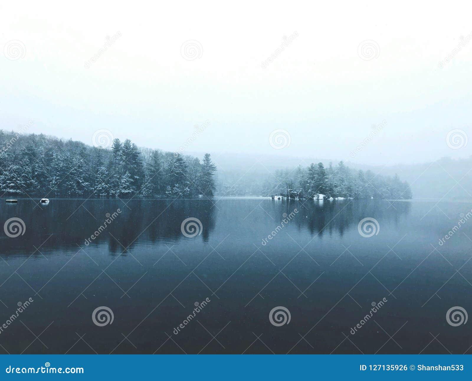 Burr stanu parka zimy stawowy jeziorny widok