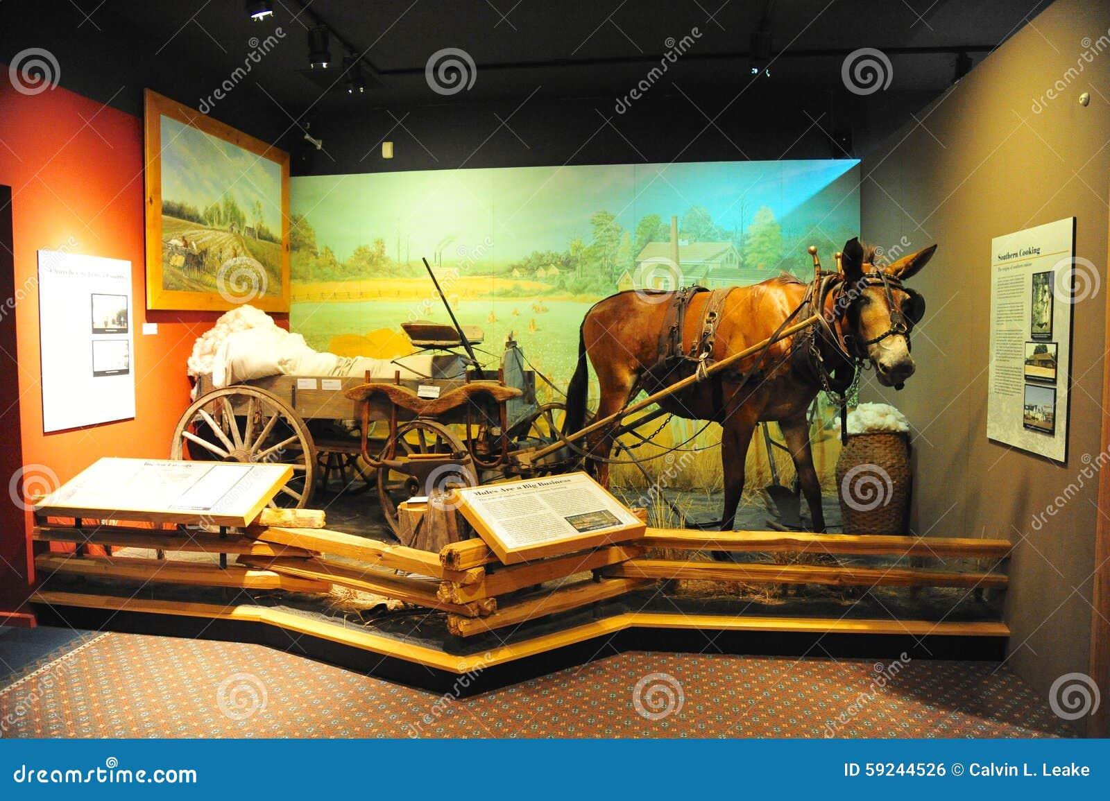 Download Burro Y Carro Que Acarrean El Objeto Expuesto Del Algodón En El Museo Del Tunica En Mississippi Del Norte Foto editorial - Imagen de azúcar, ropa: 59244526