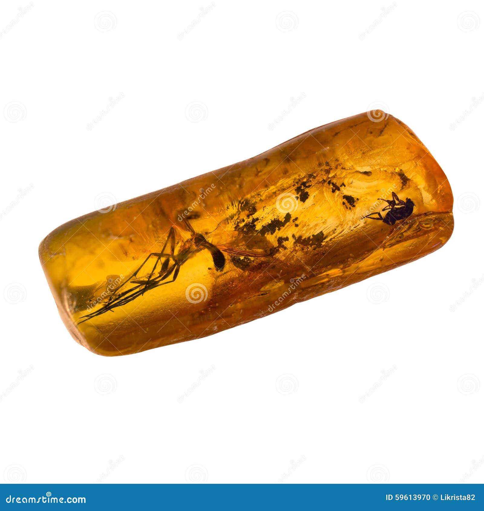 Bursztynu bałtycki kamień