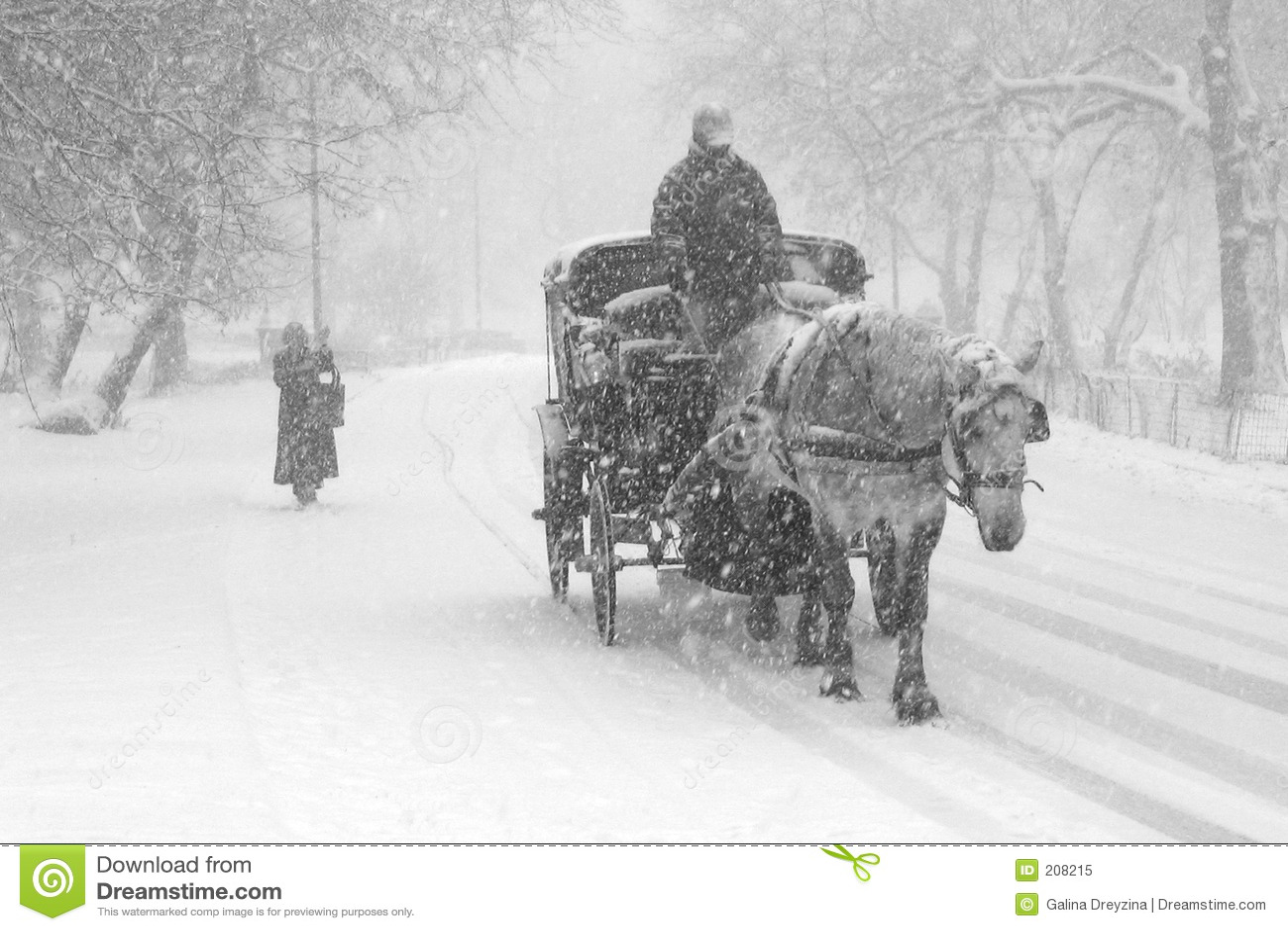 Burza śnieżna