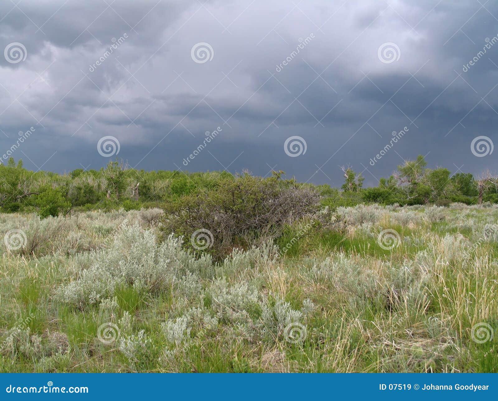 Burzliwe krajobrazu