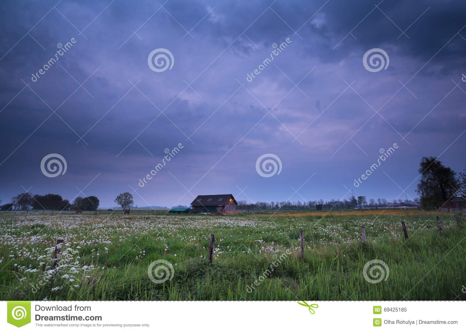 Burzowy półmrok na Holenderskiej ziemi uprawnej