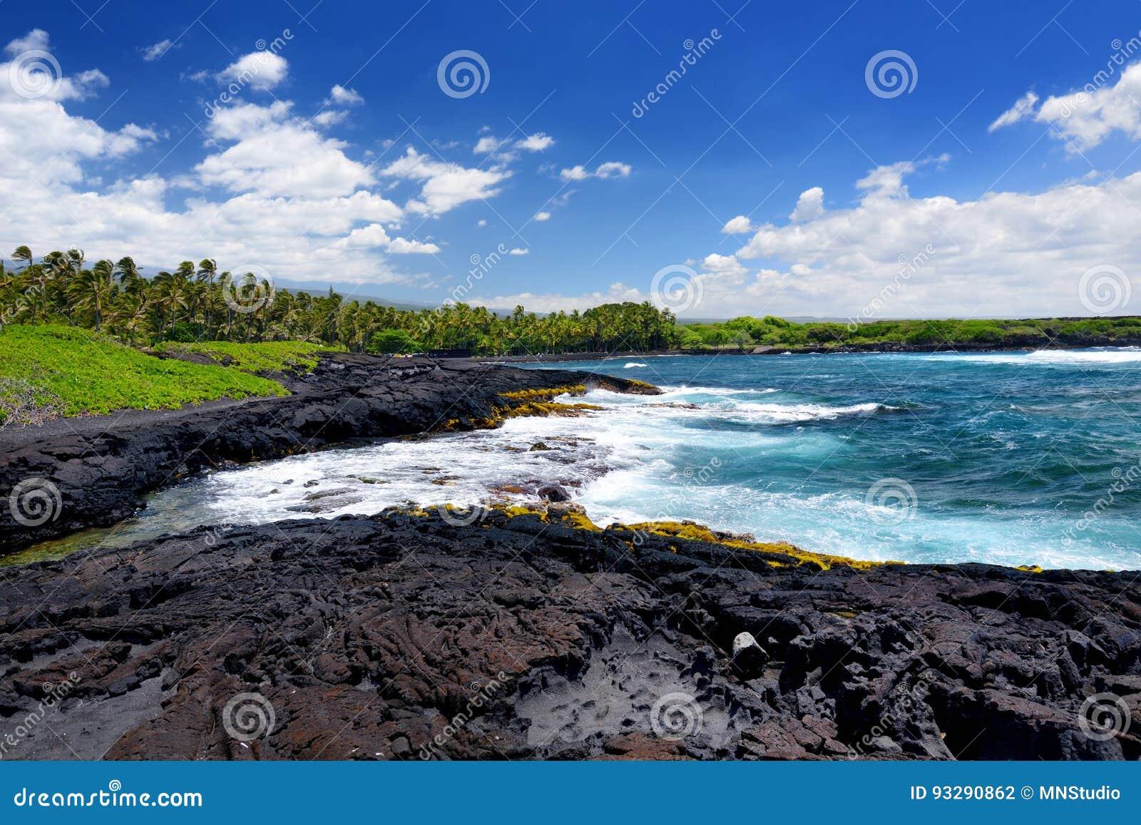 Buse och stenig kust på sydkusten av den stora ön av Hawaii
