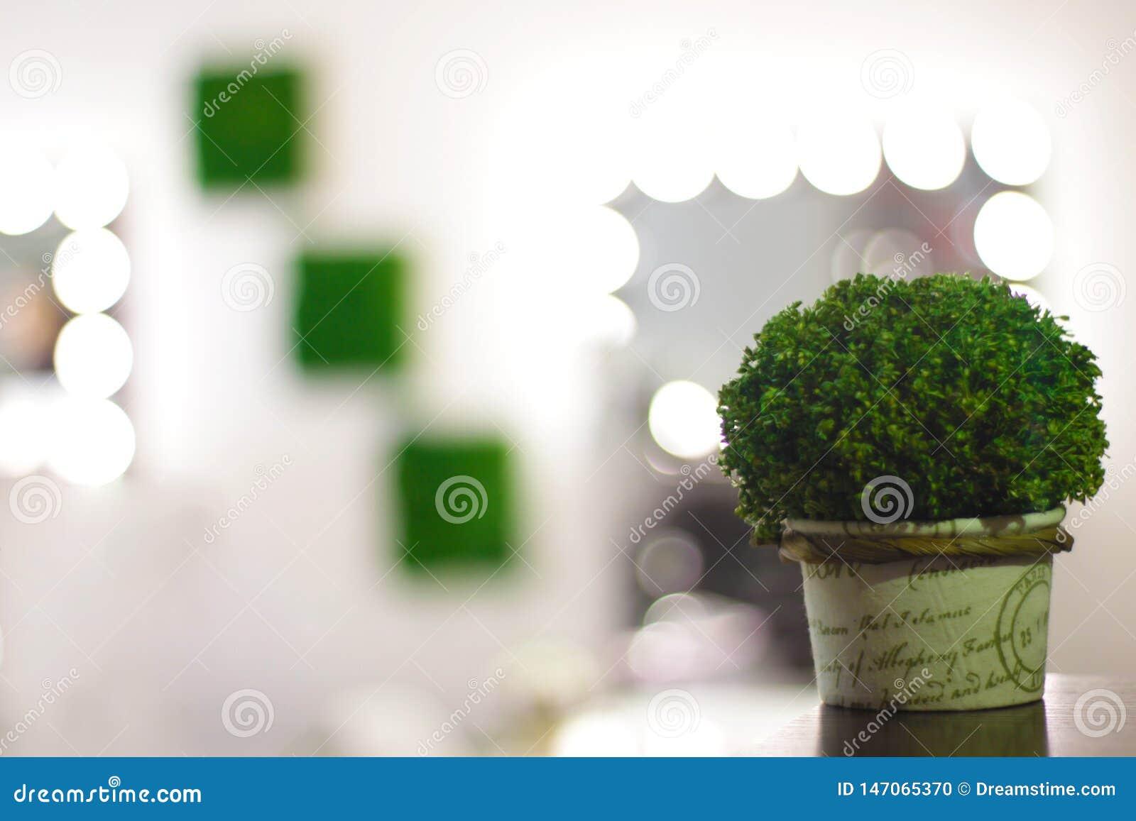 Bush decorativo verde en el fondo del sitio de la cosmetolog?a y de la silla del maquillaje con las flores