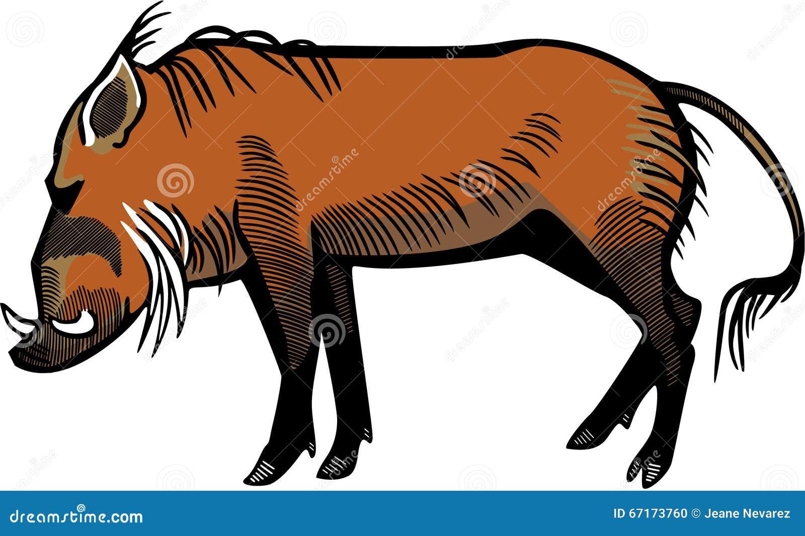 Warthog Cartoons Illustrations Amp Vector Stock Images