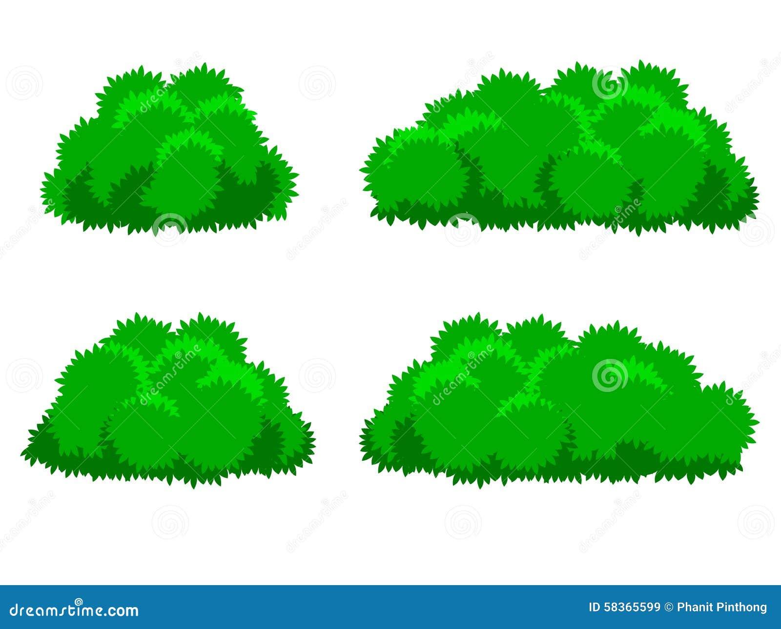 Bush Plant Images & Stock Pictures. Royalty Free Bush ...