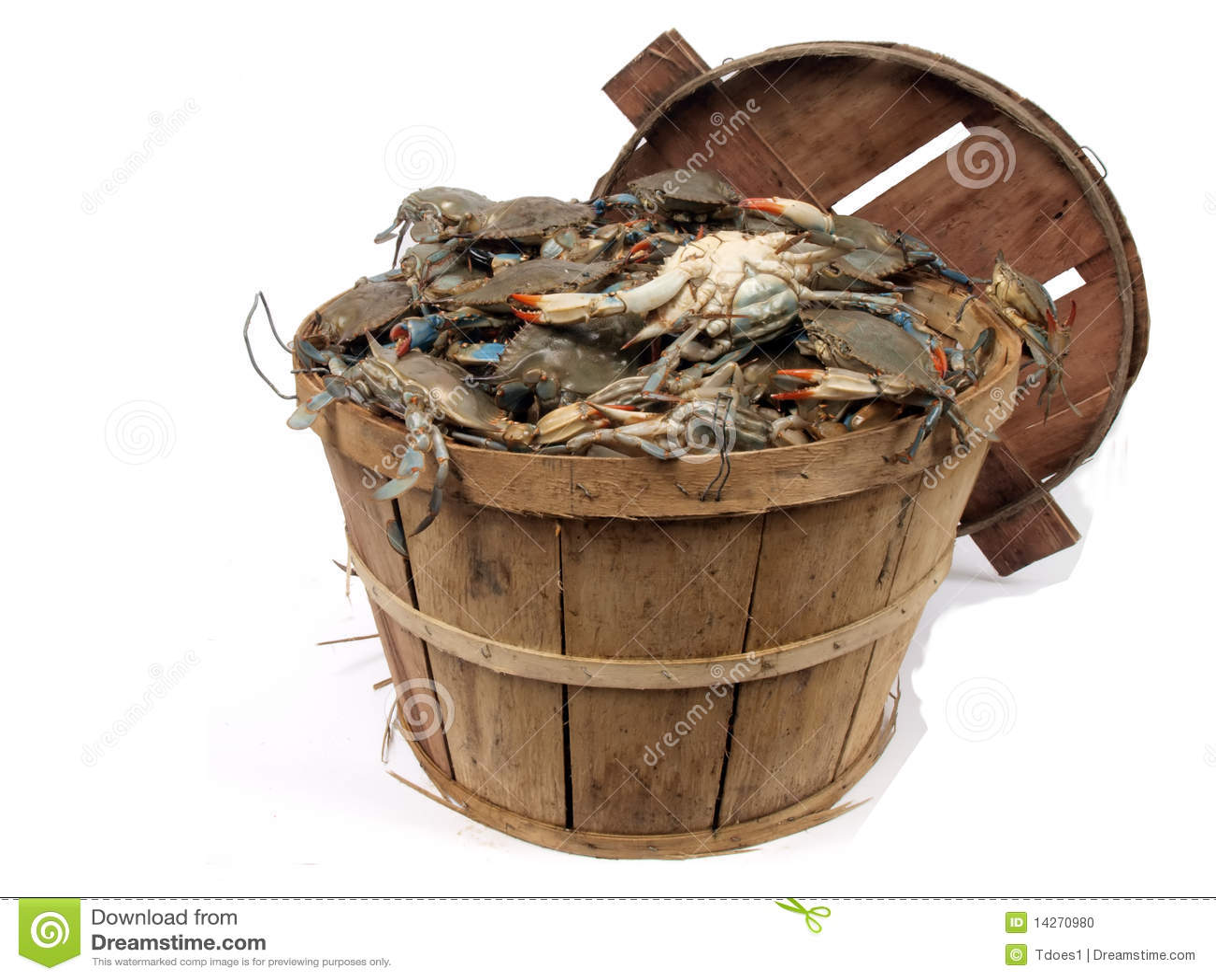 Bushel Basket Of Crabs 3 Stock Photo Image Of Tidal
