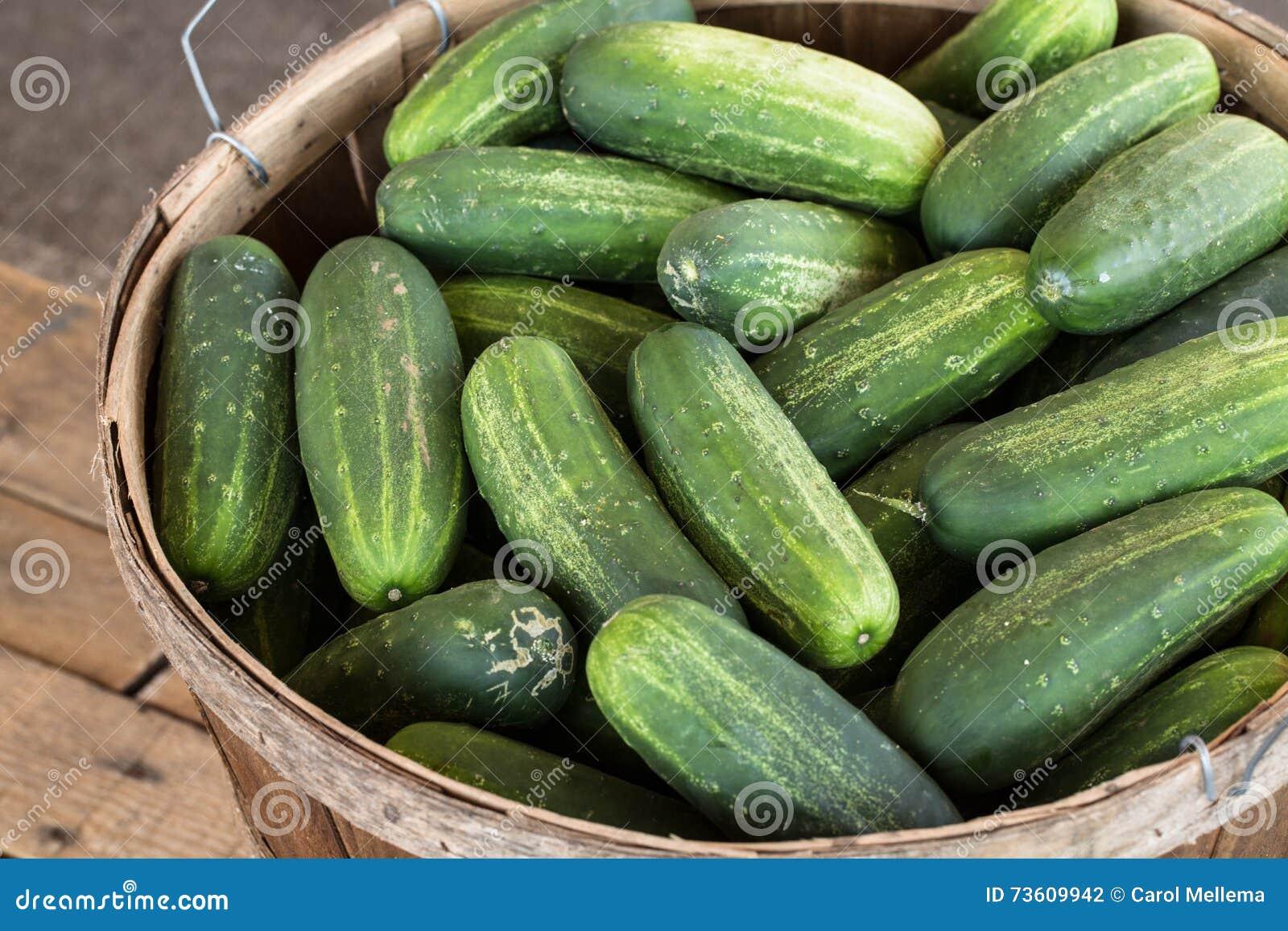 Why dream of cucumbers