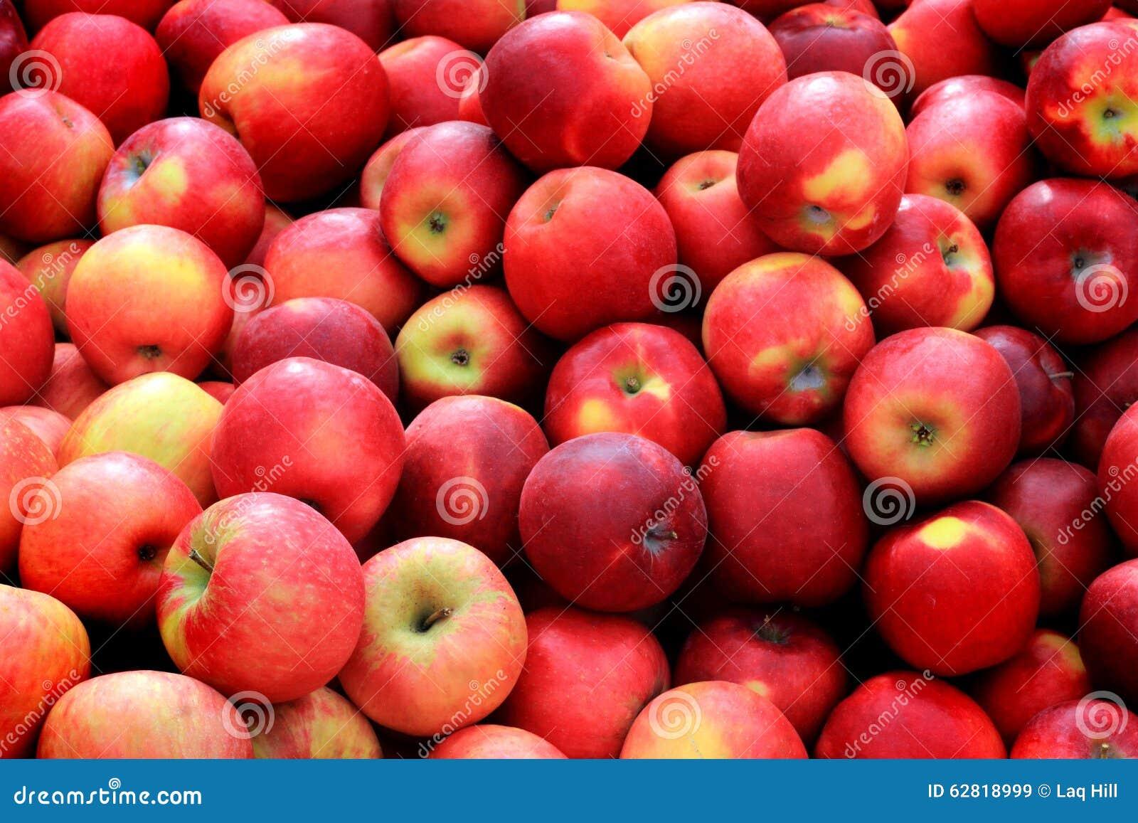 Bushel rode appelen
