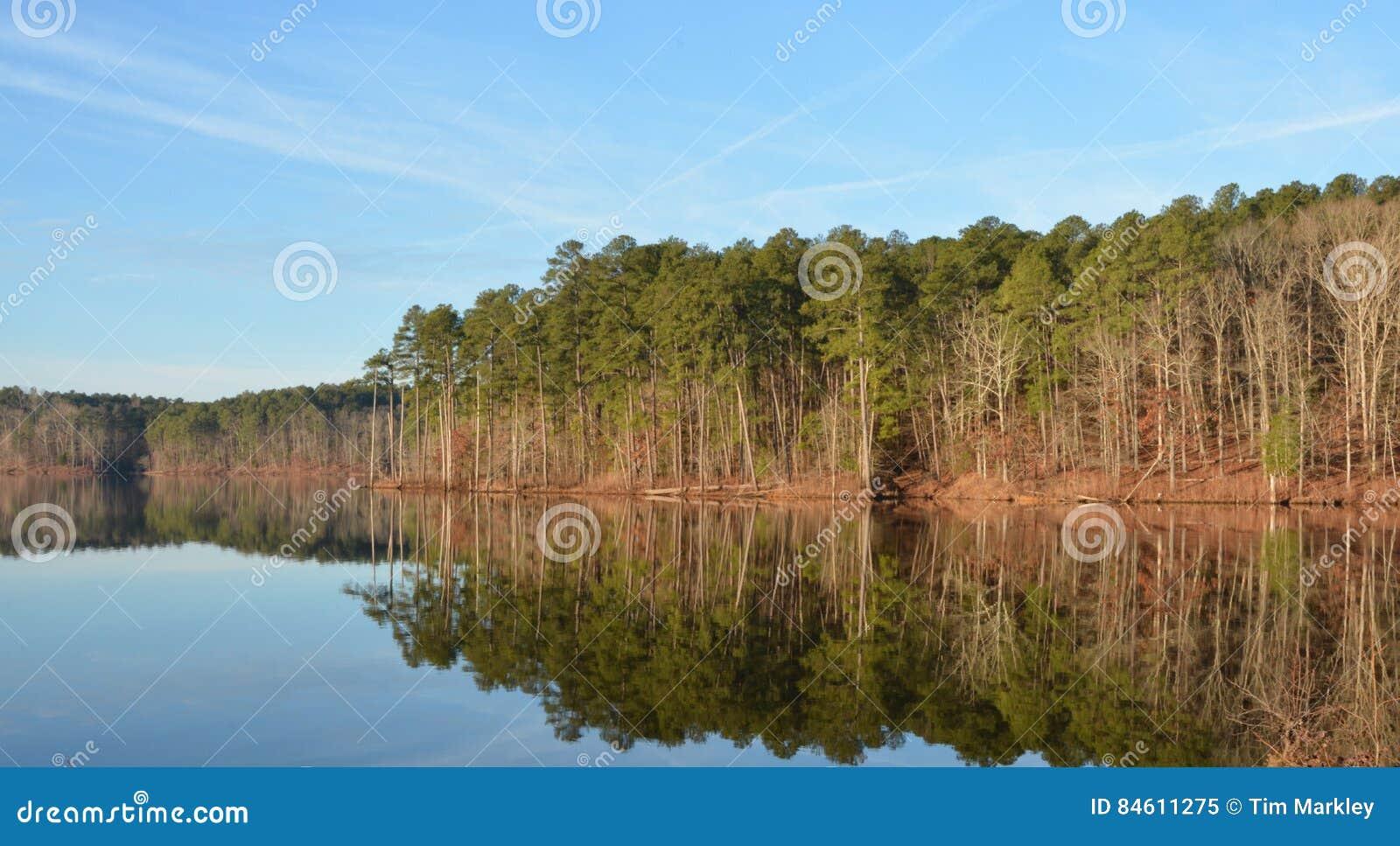 Bushers uspokajają składu jeziornego moutain target1052_0_ odbicia zmierzchu drzewa pionowo
