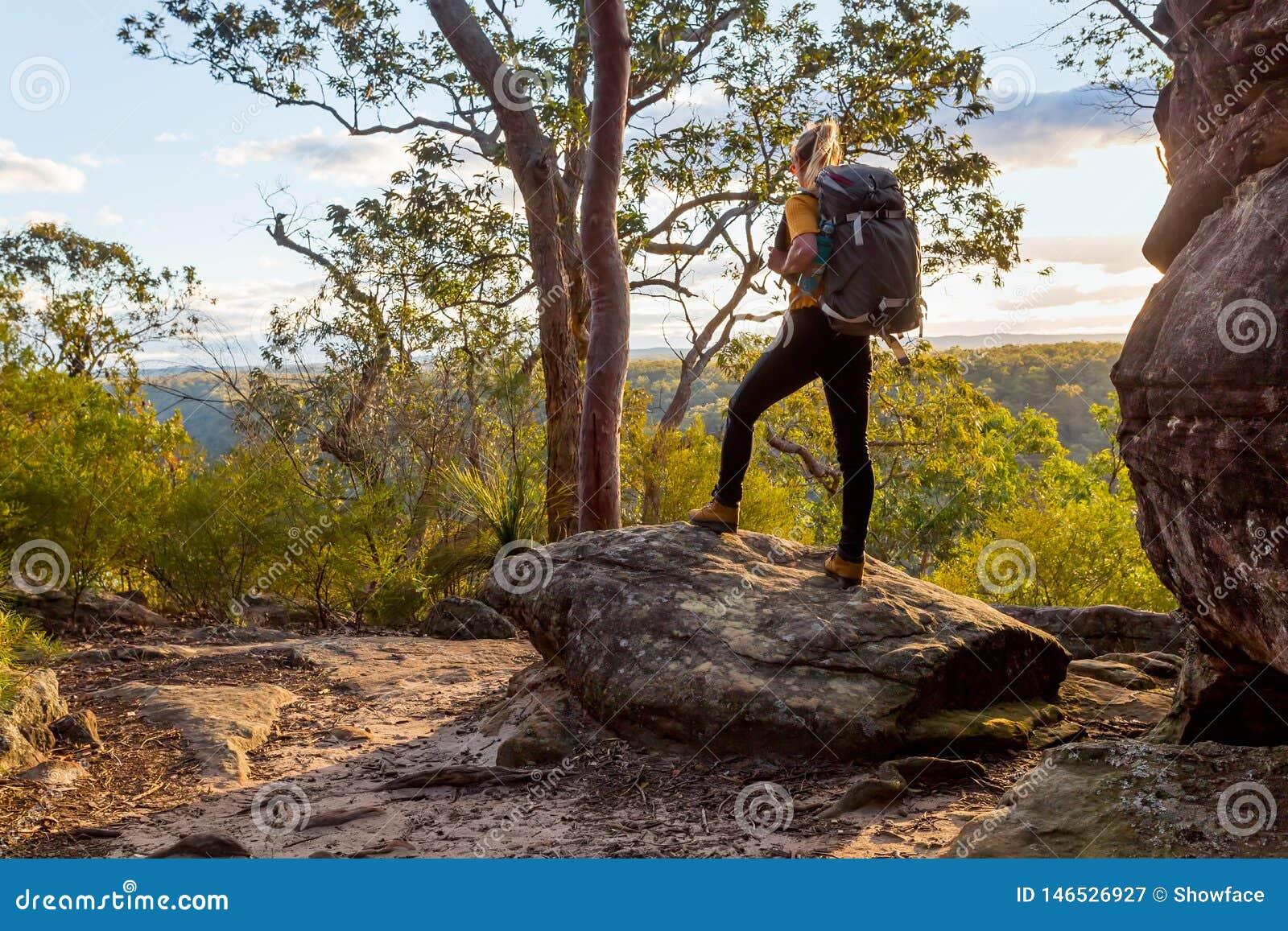 Bushwalker fêmea com a trouxa que anda no bushland australiano