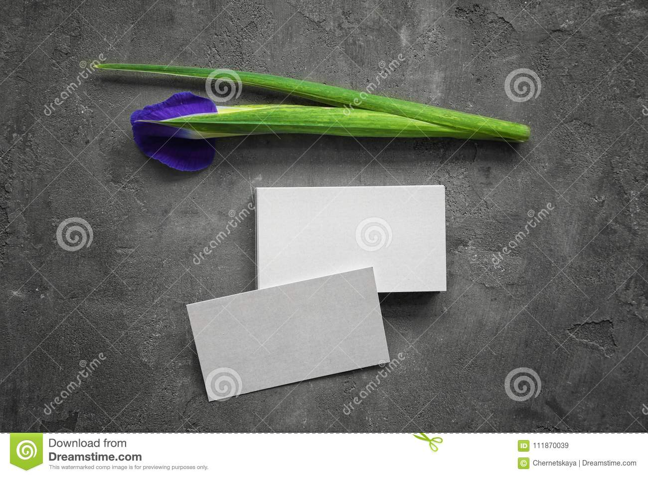 Business Cards And Iris Flower Stock Image - Image of empty, flower ...