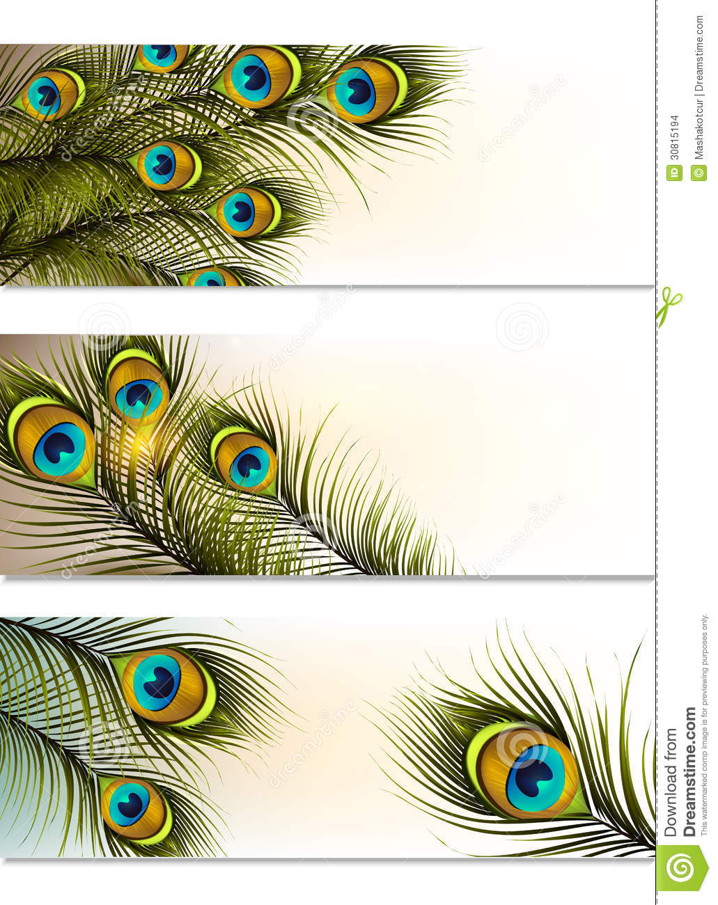 business cards vector set with peacock ferns stock vector