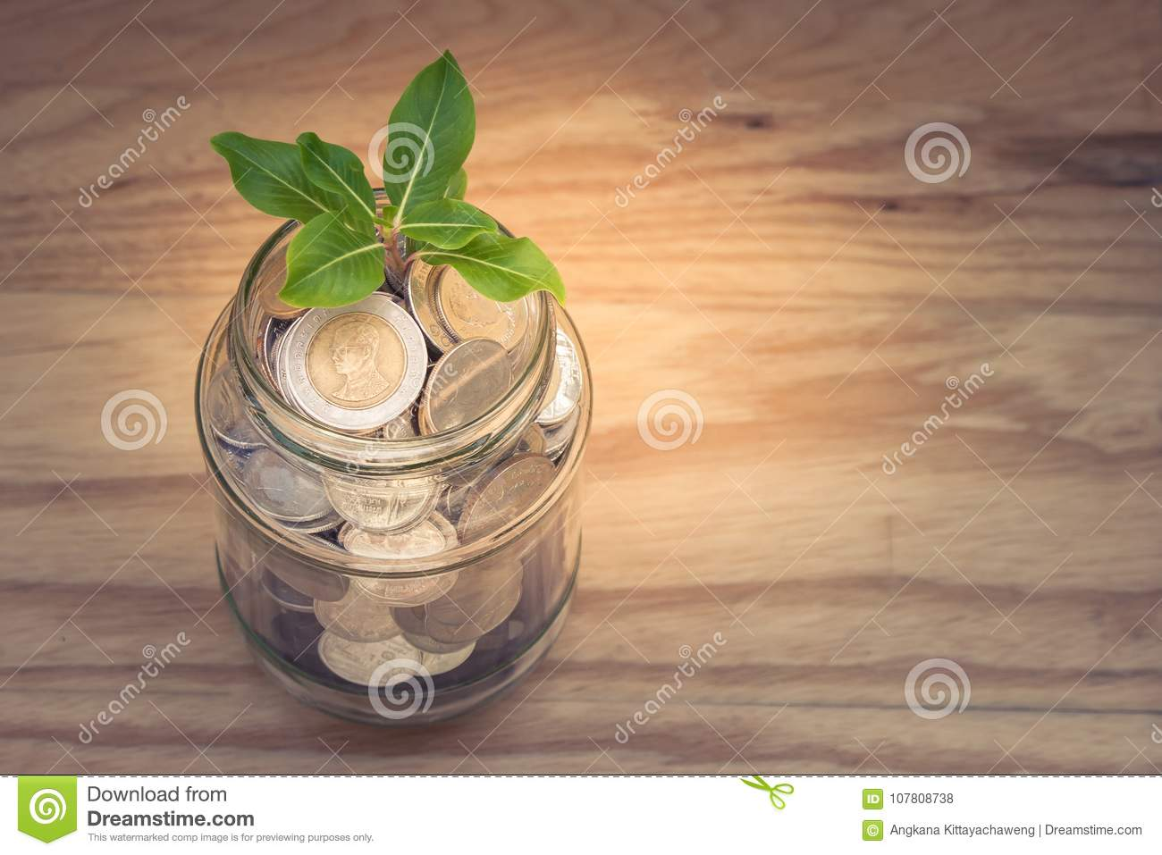 Business and Financial Concept : Green sprount tree growing through money coins in savings money glass jar.