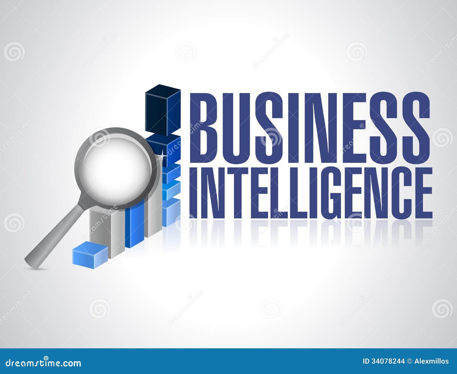 Business intelligence essay